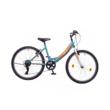 """Neuzer Cindy 6s 24"""" Gyermek Kerékpár Több színben"""
